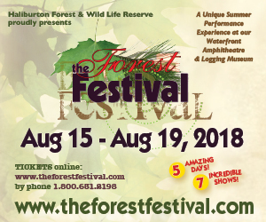 Forest Festival - 8/20/2018