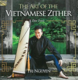 04 Vietnamese Zither