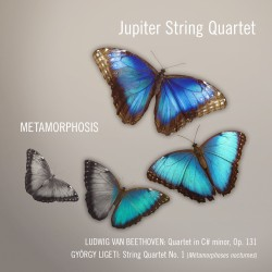 04 JQ Metamorphosis cover
